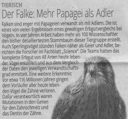 ST Tierisch Falken Papageien kl