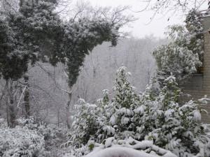 Schnee d 150124