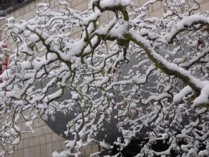 Schnee i 150124
