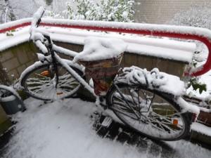 Schnee l 150124