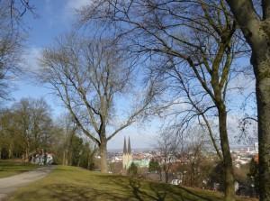Bielefeld 7