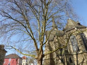 Pauluskirche Bielefeld 2-2015