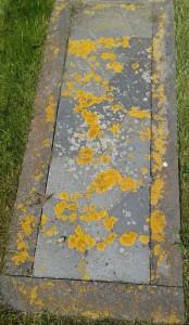 Texel Grab ohne Stein x