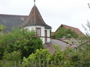 Pfalz Rhodt 150907