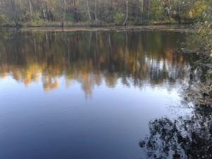 Herbsttag Ohligser Heide c 151023