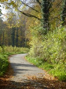 Herbsttag Schwanenmühle 2 kl