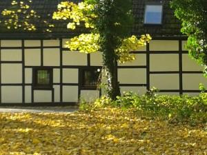 Herbsttag Schwanenmühle Fachwerk JR