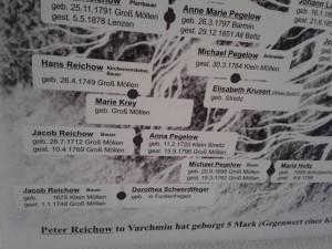 Stammbaum Reichow (Detail)