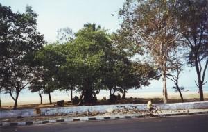 Mumbai 1998