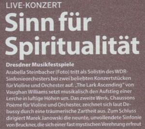 Sinn Spirit
