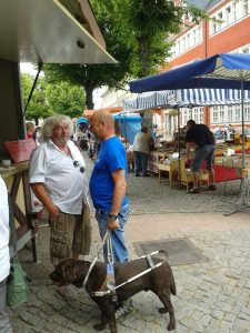 Arnstadt Markt JR2