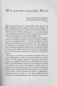 deutscher-wald-seite-a