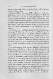 deutscher-wald-seite-b