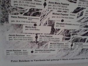 stammbaum-reichow-detail