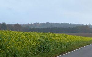 wupperhof-weg-2x