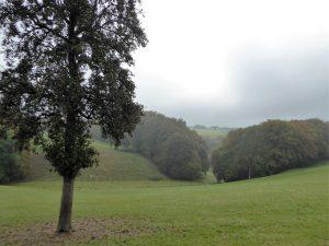 wupperhof-weg-4x