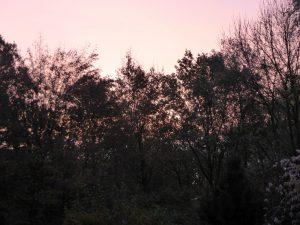 isarweg-ausblick-161112