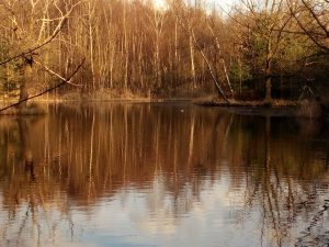 Drei-Insel-Teich c