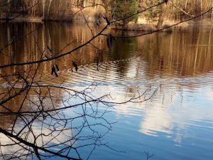 Drei-Insel-Teich o