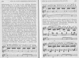 Beethoven 106 Variationstechnik