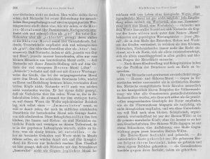 Nietzsche Peter Gast Nachwort 2