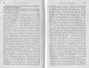 Nietzsche Peter Gast Nachwort 3