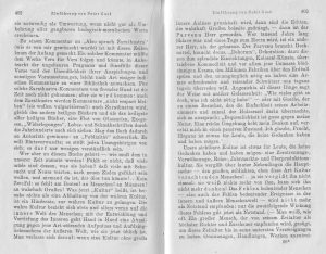 Nietzsche Peter Gast Nachwort 5
