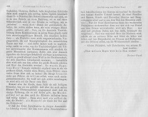 Nietzsche Peter Gast Nachwort 7