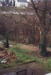 Eiche Frühjahr 1989 a