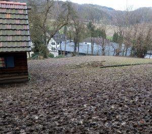 Wanderung Hirschgehege Altenhof 180107
